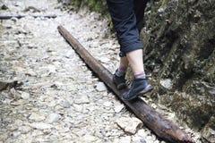 Ragazza che cammina attraverso il flusso della montagna Fotografia Stock Libera da Diritti
