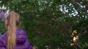 Ragazza che cammina lungo gli alberi lilla di fioritura nel parco della città al giorno di molla Vista posteriore Adolescente del video d archivio