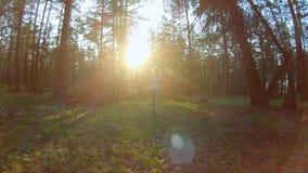 Ragazza che cammina nella foresta stock footage