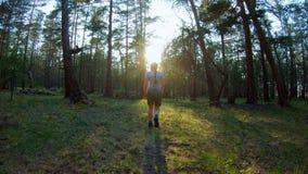 Ragazza che cammina nella foresta di conifere video d archivio