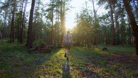 Ragazza che cammina nella foresta di conifere stock footage