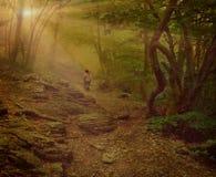Ragazza che cammina sul legno nebbioso Fotografia Stock Libera da Diritti