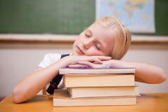 Ragazza che dorme sui suoi libri Fotografia Stock Libera da Diritti