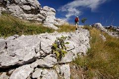 Ragazza che fa un'escursione sulla traccia del Premuzic Fotografia Stock