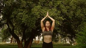 Ragazza che fa yoga nel parco archivi video