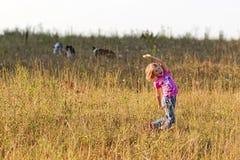 Ragazza che gioca con border collie Fotografia Stock