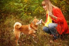 Ragazza che gioca con un cane Shiba Inu nel parco di autunno fotografie stock libere da diritti