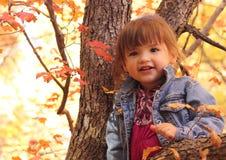 Ragazza che gioca nell'albero di autunno Fotografia Stock Libera da Diritti