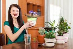 Ragazza che lavora con i fiori della viola Immagini Stock Libere da Diritti