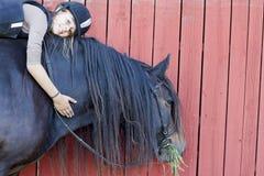 Ragazza che monta un cavallo svedese del nord Fotografia Stock Libera da Diritti