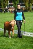 Ragazza che mostra un mini cavallino Fotografia Stock