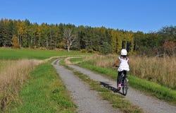 Ragazza che mountainbiking Immagini Stock Libere da Diritti