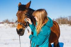 Ragazza che pettina la criniera nera del cavallo con un pettine fotografia stock