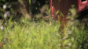 Ragazza che porta il vestito leggero da estate che cammina nel stock footage