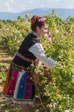 Ragazza che posa durante il festival di raccolto di Rosa in Bulgaria fotografie stock