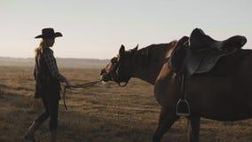 Ragazza che prende sulla passeggiata il suo bello cavallo scuro dalle redini su alba video d archivio