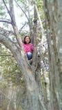 Ragazza che scala un albero Fotografie Stock
