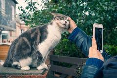 Ragazza che segna gatto sulla via e sulle fotografie sullo smartphone Fotografia Stock Libera da Diritti