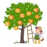 Ragazza che seleziona arancia illustrazione di stock
