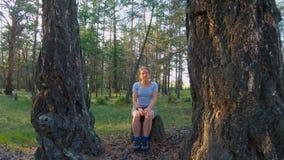 Ragazza che si siede su un ceppo fra due grandi alberi nel legno archivi video