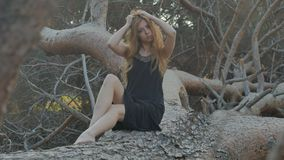 Ragazza che si siede su un pino caduto nella sera stock footage