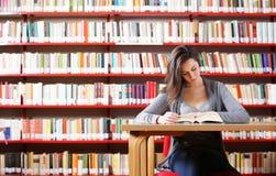 Ragazza che studia alla libreria Fotografia Stock