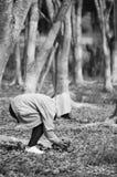 Ragazza che tiene foglia nella foresta asciutta Fotografia Stock