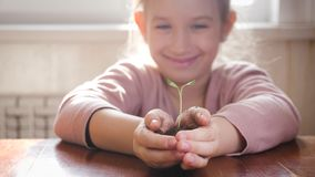 Ragazza che tiene giovane pianta verde in mani Concetto e simbolo di crescita, cura, proteggente la terra, ecologia video d archivio