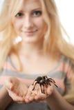 Ragazza che tiene un grande ragno sulle sue mani Immagini Stock Libere da Diritti