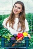 Ragazza che tiene una scatola con le verdure ecologiche Immagine Stock Libera da Diritti