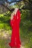 Ragazza in chiffon rosso all'aperto Fotografia Stock