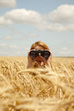 Ragazza con binoculare al campo di frumento. immagine stock