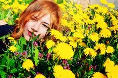 Ragazza con capelli rossi che si trovano sul campo dei denti di leone Fotografia Stock