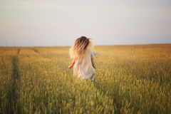Ragazza con i fiori che cammina su un campo di grano Immagine Stock Libera da Diritti