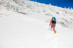 Ragazza con il cane in montagne di inverno Fotografia Stock