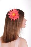 Ragazza con il fiore in suoi capelli Immagini Stock Libere da Diritti