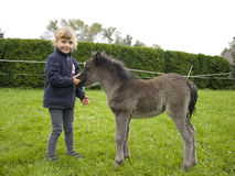Ragazza con il foal appena nato Fotografia Stock Libera da Diritti