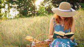 Ragazza con il libro su un picnic stock footage