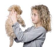 Ragazza con il suo cucciolo del barboncino di giocattolo (vecchio 9 settimane) immagine stock libera da diritti