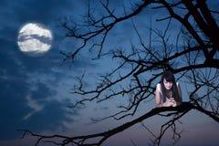 Ragazza con il telefono su un ramo, luna su fondo fotografia stock libera da diritti