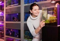 Ragazza con interesse che esamina il pesce dei pesci piccoli in acquario con il Se Immagine Stock Libera da Diritti