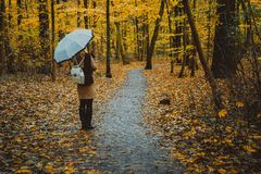 Ragazza con l'ombrello sul sentiero nel bosco variopinto autunnale Fotografie Stock