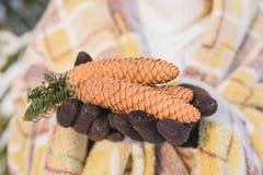 Ragazza con le maschere nell'inverno delle mani la foresta Fotografia Stock Libera da Diritti