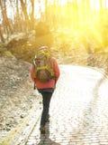 Ragazza con lo zaino che cammina nel parco Fotografia Stock Libera da Diritti