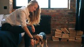 Ragazza con un cane video d archivio