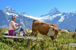 Ragazza con una brocca di latte e di mucche Fotografie Stock Libere da Diritti