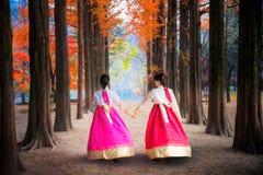 Ragazza coreana che cammina nel parco di nami nell'isola di nami fotografie stock libere da diritti