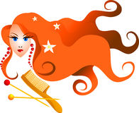Ragazza dai capelli lunghi con un pettine ed i perni illustrazione vettoriale