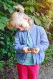 ragazza del bambino che tiene il piccolo rospo della rana della foresta Immagine Stock