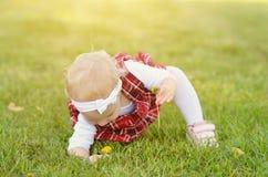 Ragazza del bambino sul campo Immagini Stock